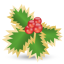 128x128px size png icon of Mistletoe