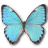 Morpho Portis Male Icon