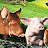 Animal Farm Icon