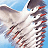 Winged Migration Icon
