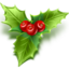 http://www.veryicon.com/icon/64/Holiday/Silent%20Night%20Christmas/Mistletoe.png