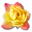 http://www.veryicon.com/icon/64/Love/Rose/Rose%20Yellow%202.png