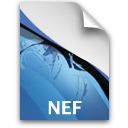 PS NEFFileIcon Icon