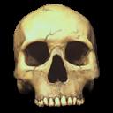 Skull.png (128×128)