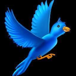 Flying bird Icon